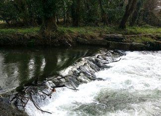 Río Miñor