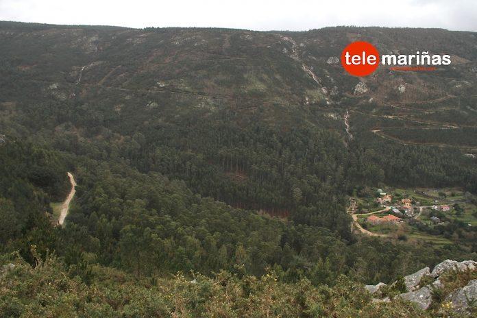 Sobreiras do Faro en Viladesuso, Oia
