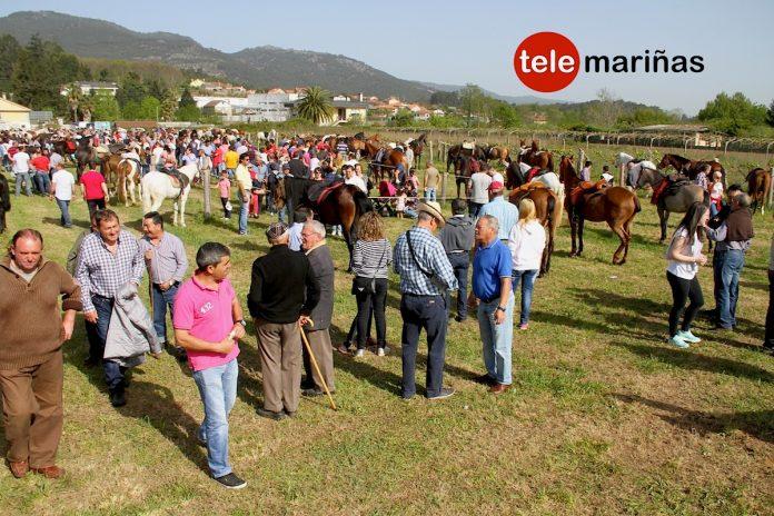 Feira Cabalar de San Bartolomé 2015