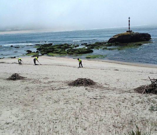 A Guarda limpia manualmente sus playas