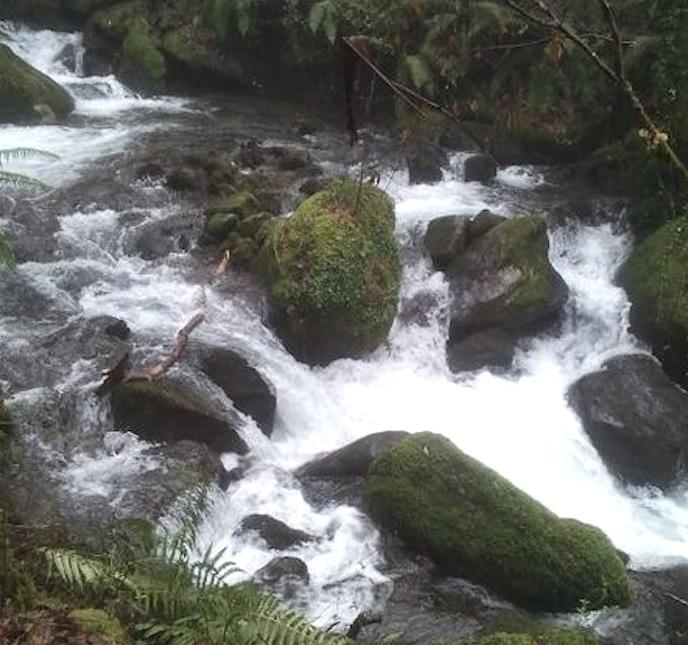 Andainas de la Eurocidade por los ríos Calvo y Deva
