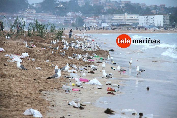 Más de 40.000 personas dejan más de 20 toneladas de basura en Panxón