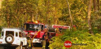 Arden 300 m2 en un conato de incendio forestal en Vincios