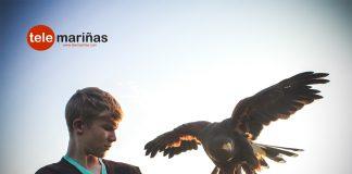 Pasión por las aves rapaces en Vincios