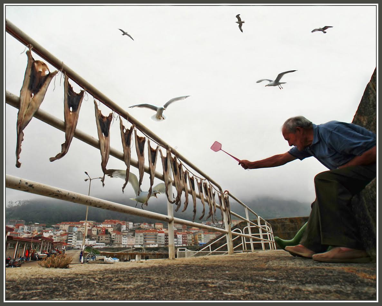 segundo-premio-concurso-de-fotografia-dia-mundial-del-turismo-a-guarda