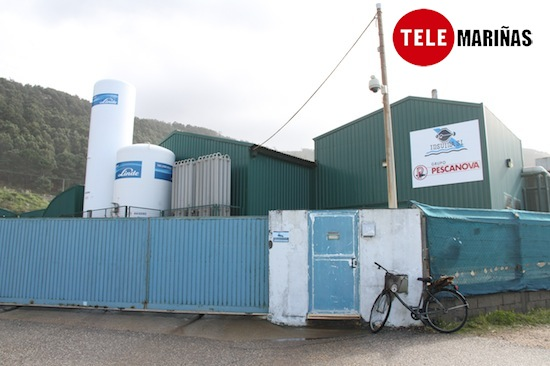 El TSXG avala la legalidad de la piscifactoría de Mougás