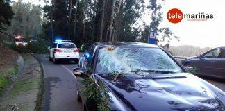 Un árbol cae sobre un coche cuando circulaba por Gondomar