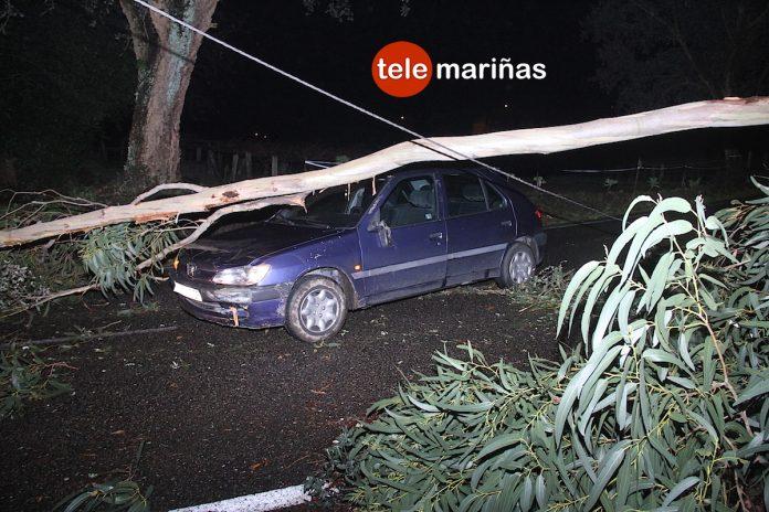 Un árbol derribado por el temporal provoca un accidente en O Rosal