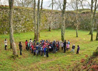 """Más de 600 alumnos de primaria e infantil conocieron los árboles """"senlleiros"""" de Tomiño"""