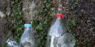 Trampas caseras para erradicar la avispa Velutina en Gondomar