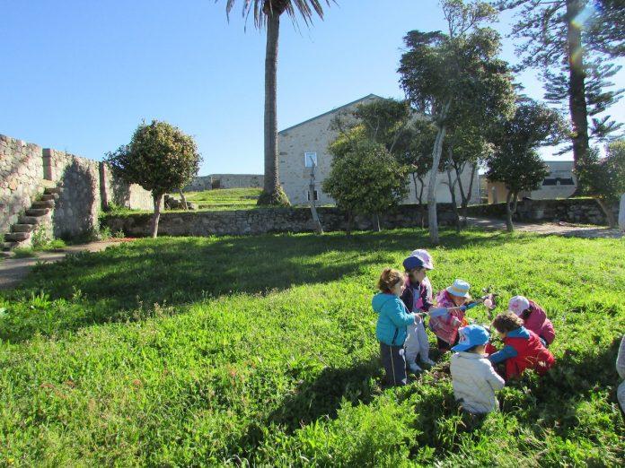 Niños de la guardería de A Guarda plantaron árboles en el recinto del Castelo de Santa Cruz