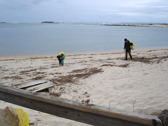 Concello y Alborada limpian las playas y la senda litoral de A Guarda