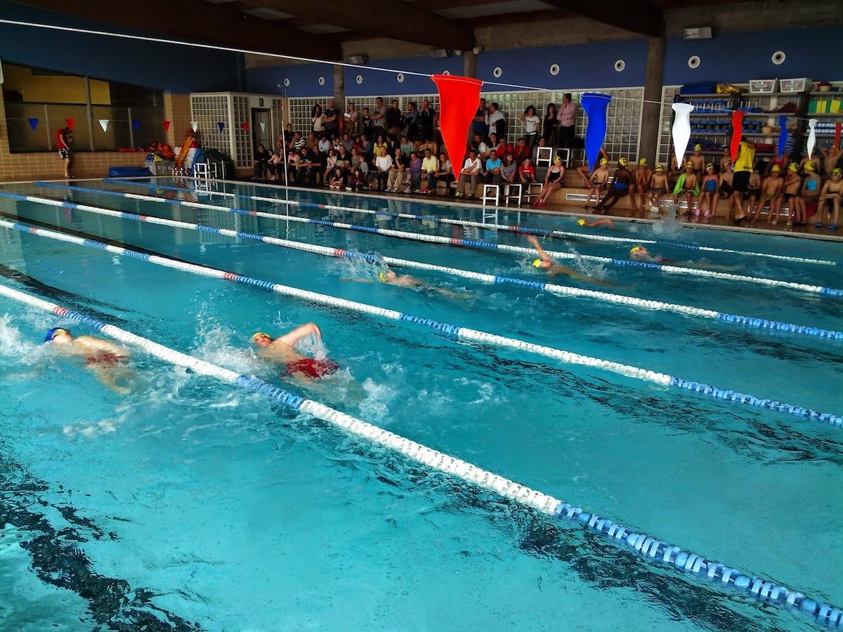 la piscina mancomunada acoger el campeonato de nataci n