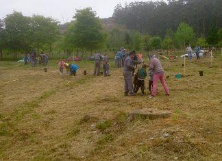 Los alumnos en la plantación arborea en Chans, en el monte Trega de A Guarda