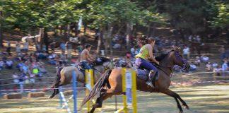 Piñeiro celebra la XXII romería do cabalo