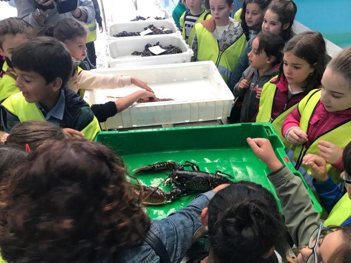 Orpagu acerca el mar a 200 escolares de A Guarda