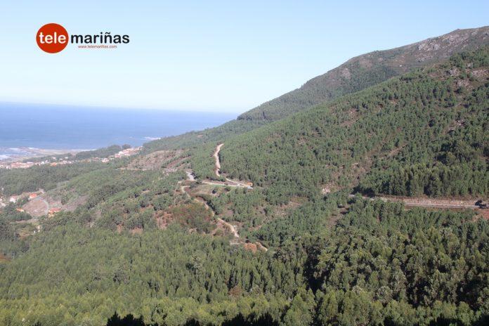 Oia proyecta un parque forestal de 50.000 metros cuadrados
