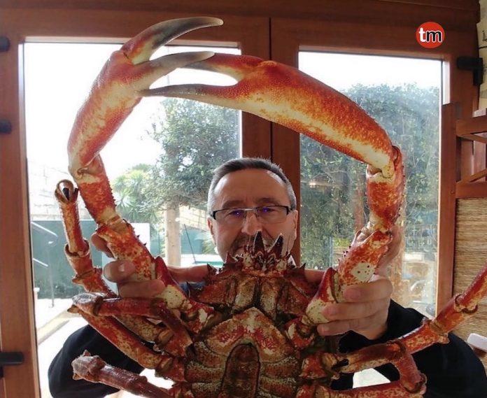Capturan un centollo de más de 5,5 kilos en la costa de A Guarda