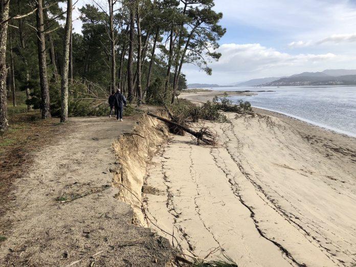 Las mareas vivas y el temporal causaron una importante erosión del terreno en la A Lamiña y en el Codesal