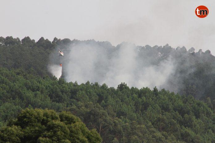 Incendio forestal en Baredo