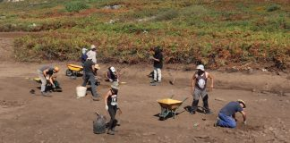Las excavaciones arqueológicas en Camposancos descubren nuevas salinas aún sin catalogar