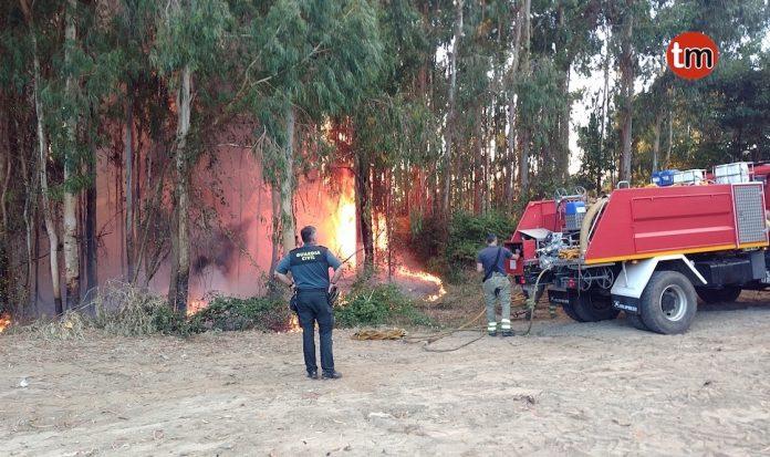 Controlado un incendio forestal en San Pedro
