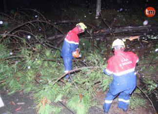 La borrasca Beatriz deja vientos de más de 90 km/h, lluvias intensas y árboles caídos