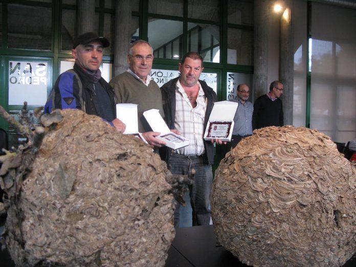 """Reconocen la labor de tres apicultores de Nigrán en la lucha contra la """"Avispa Velutina"""""""