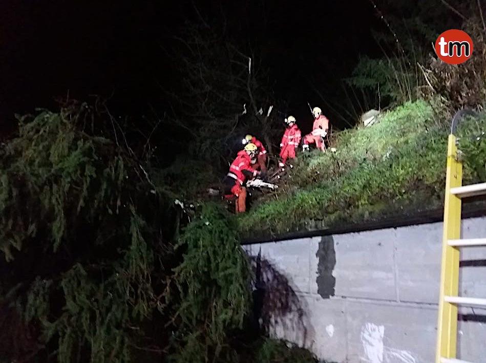 El temporal deja árboles caídos y daños en el pabellón de Panxón y en una casa de Nigrán
