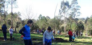 Estudiantes del CEP Pedro Caselles plantan árboles autóctonos en los montes de Tomiño