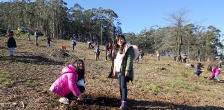 80 nenos do Ceip As Solanas repoboan de árbores autóctonas o Monte Trega